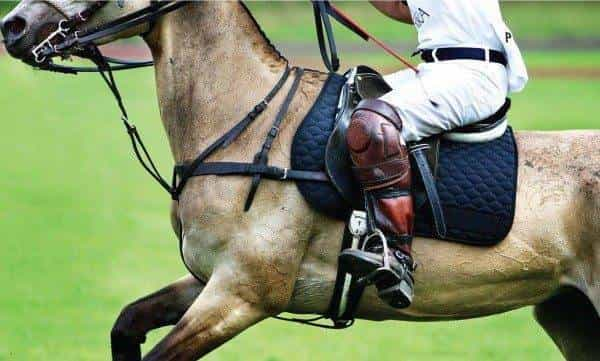 Discover Polo, the Argentine Way