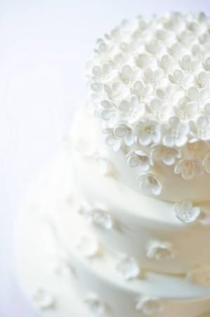 janet-cake-299x450