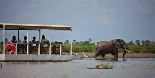 Luxury Honeymoons In Africa