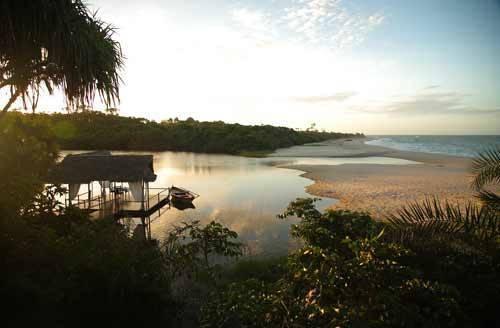 Ras Kutani Lagoon & Forest