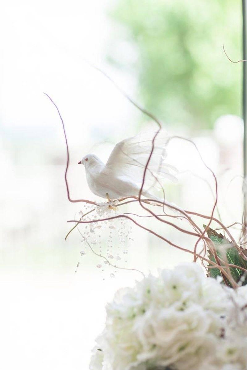 Weddding Dove