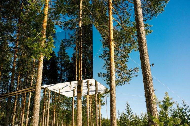 Boreal Forest,Treehotel