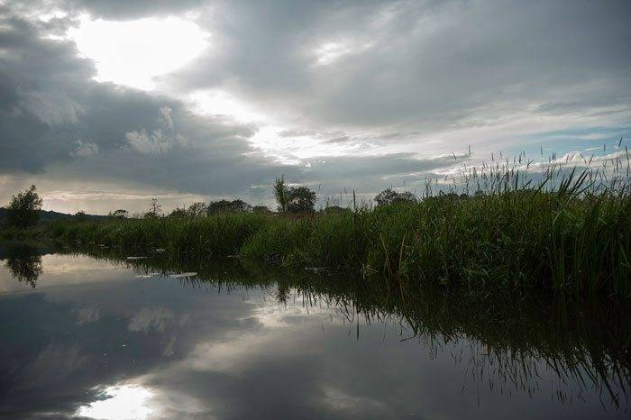 The River Stour