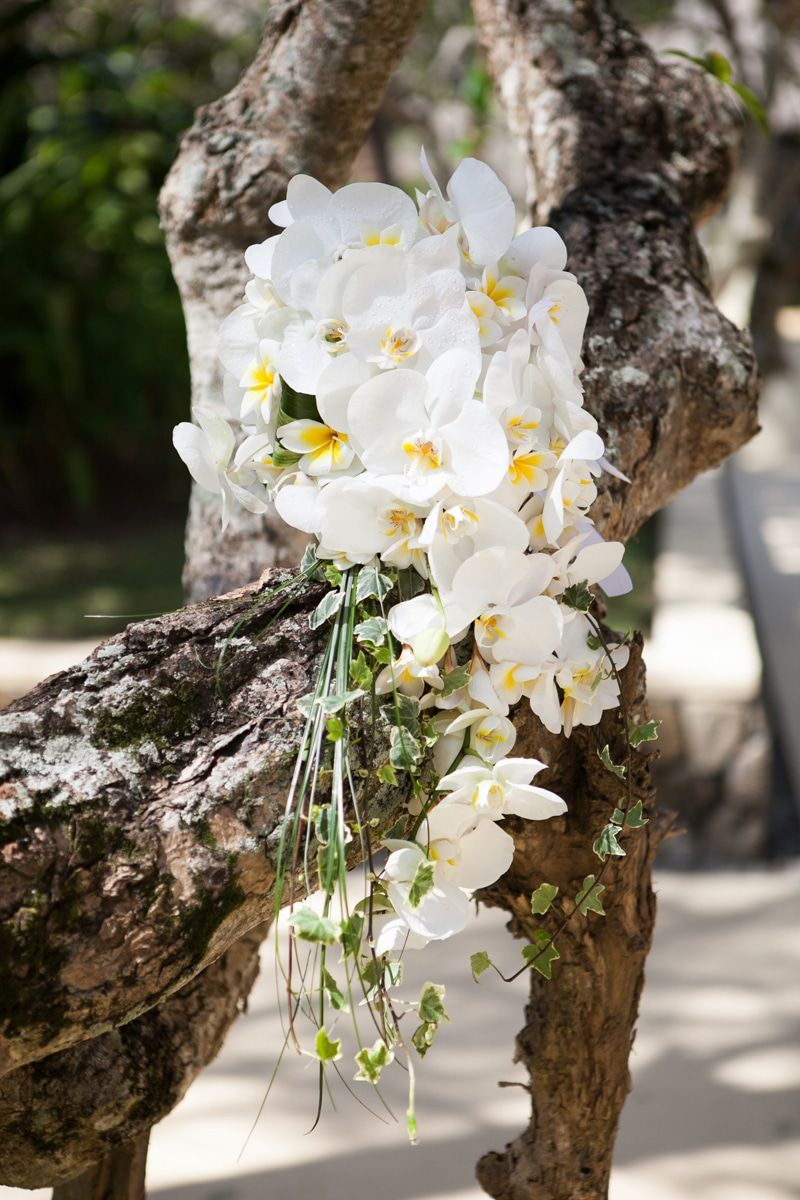 White orchids hand bouquet