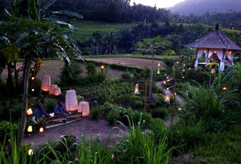 Organic Garden at Alila Manggis Bali