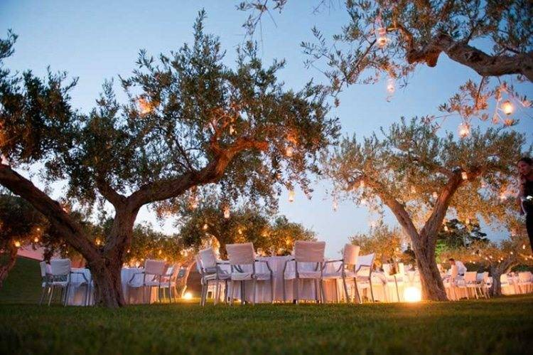 Wedding_olivetree_dinner_night-750x499.jpg