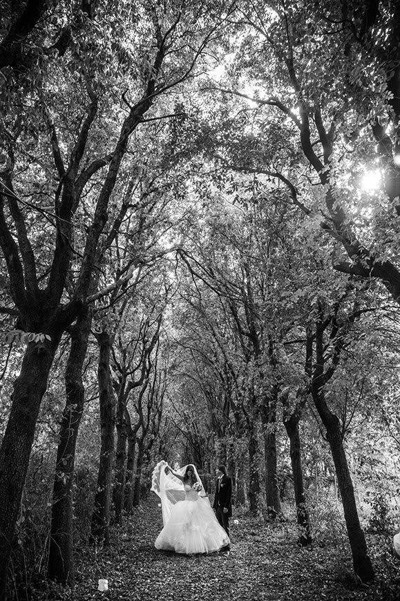 Art Wedding photo - Top 5 Wedding Venues In Romagna Italy