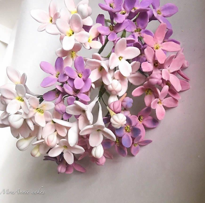 Sugar Flowers-Lilacs