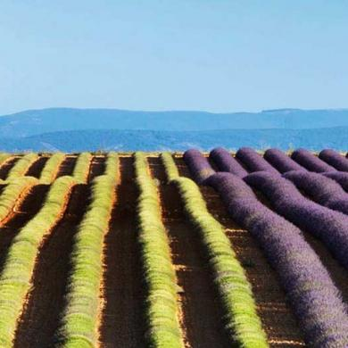 Secret Romantic Places In Provence