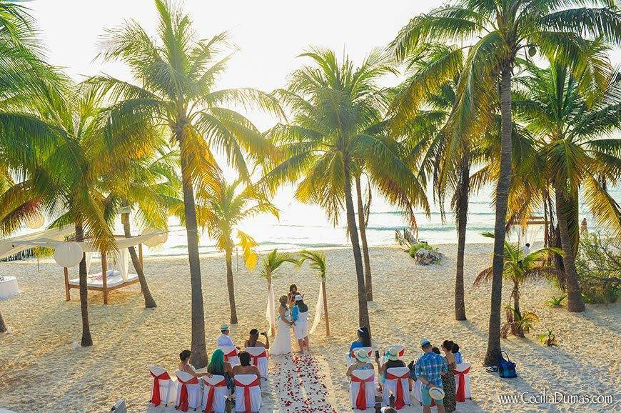 Papillon Weddings Events Same Sex Weddings Mexico - Papillon Weddings & Events – Portfolio