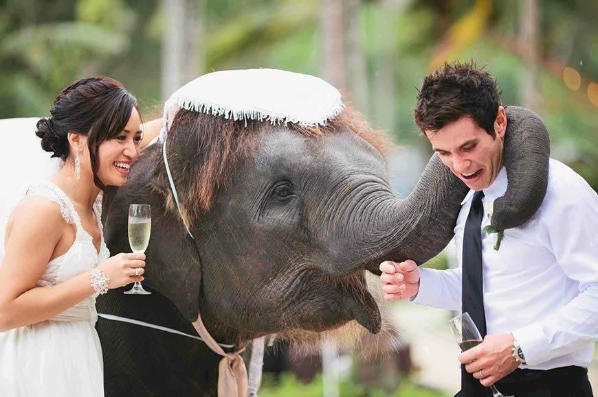 48 - Luxury Wedding Gallery