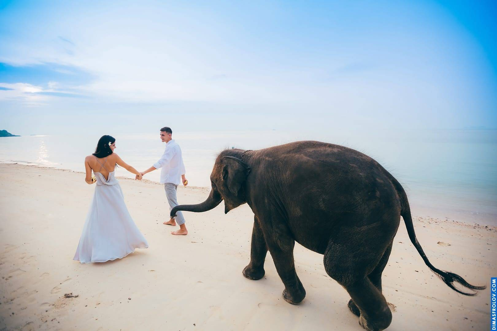 Wedding Samui 21 - Dimas Frolov Photography – Gallery