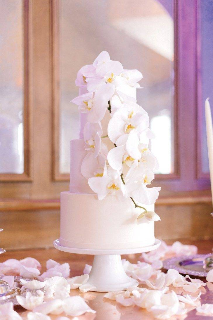 Simple decoration adds interest to a clean, pure white iced cake. Photo: James Christianson