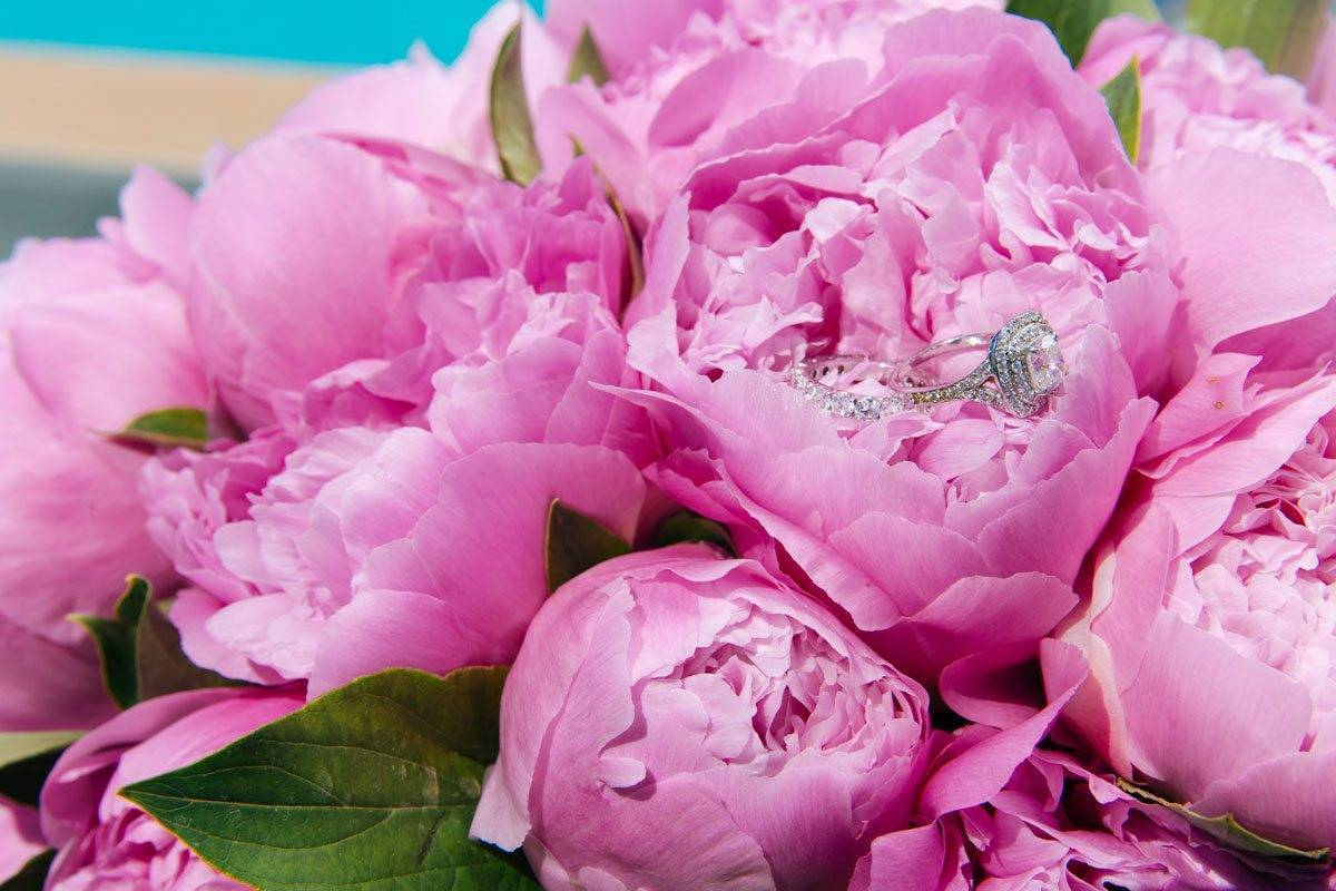 002.Mitheo Events Santorini Post Hindu Wedding pink peonies - Luxury Wedding Gallery
