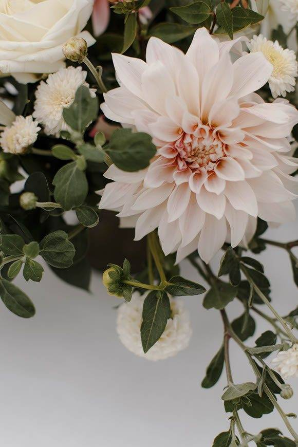 Dalia flower - Luxury Wedding Gallery