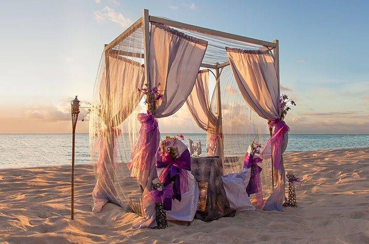 Z - Luxury Wedding Gallery