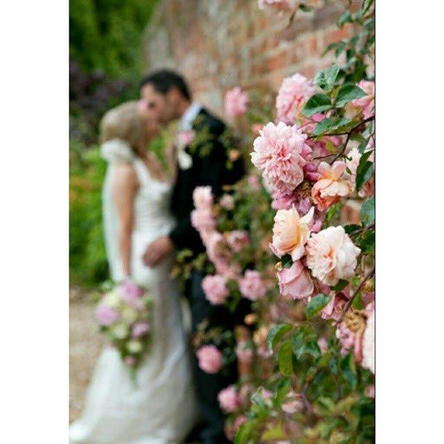 perfect wedding venue wedding event venues the wedding venue  - Luxury Wedding Gallery