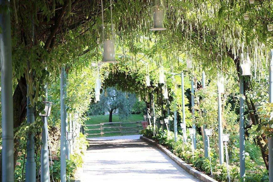 IMG 4425 - Luxury Wedding Gallery