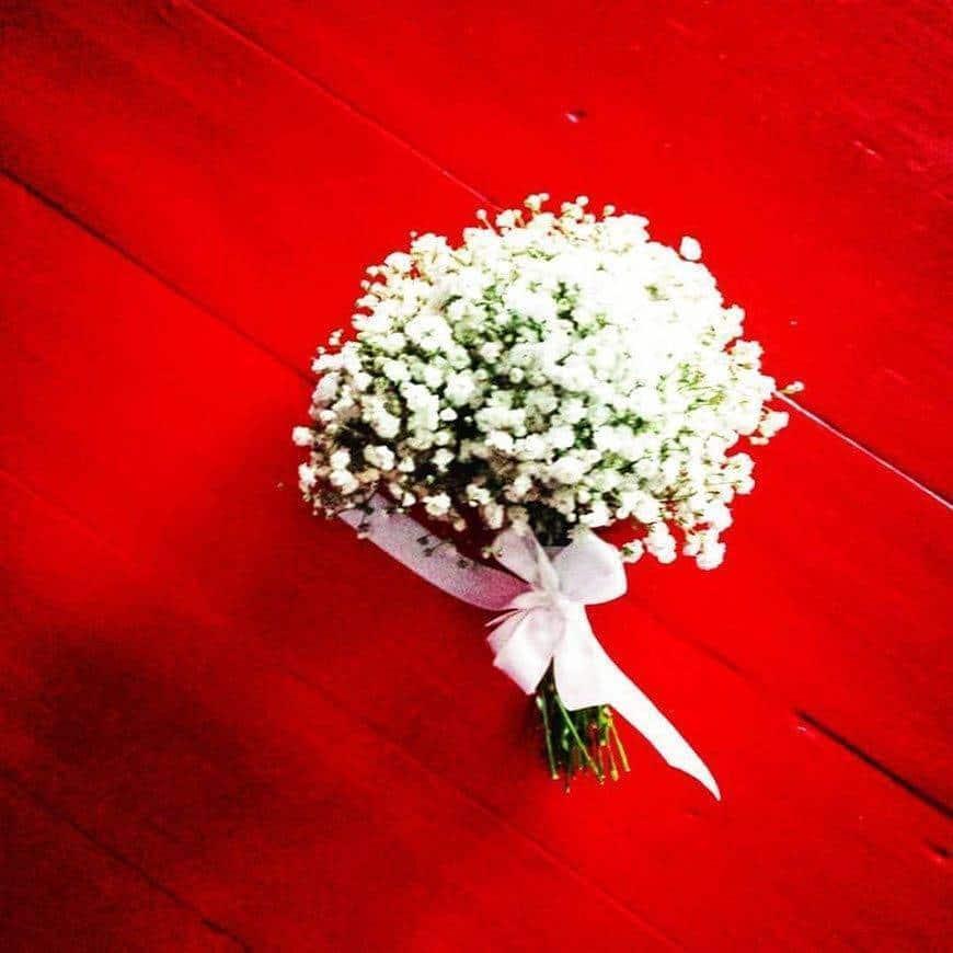 13082773 577675245733700 1821006150456893033 n - Luxury Wedding Gallery