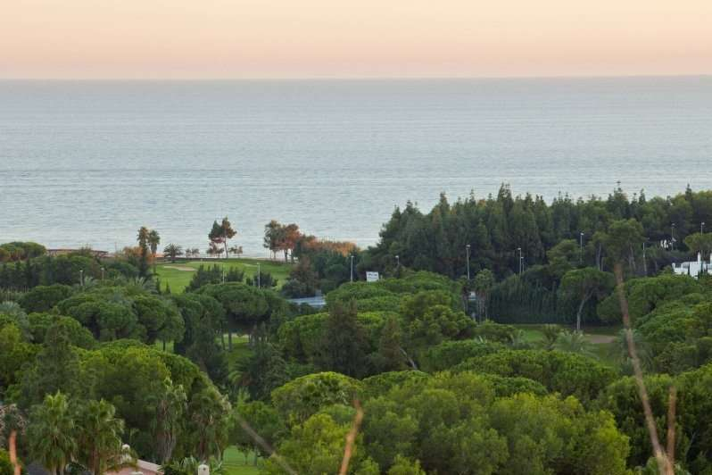 5 Star Wedding Guide to Marry in Marbella 14