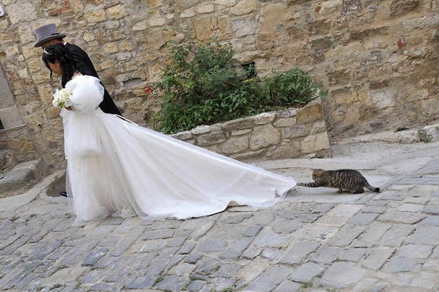 SYM7397 edited 1 - Luxury Wedding Gallery