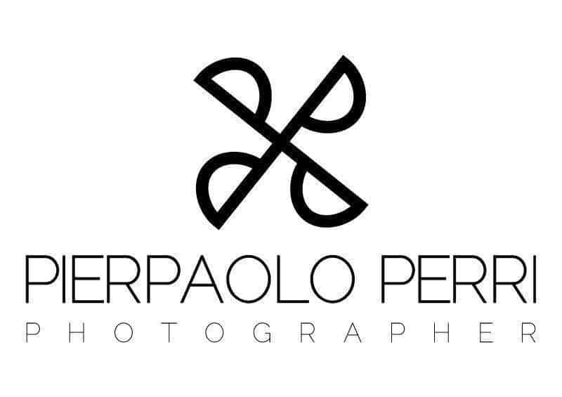 logo 800x - Luxury Wedding Gallery