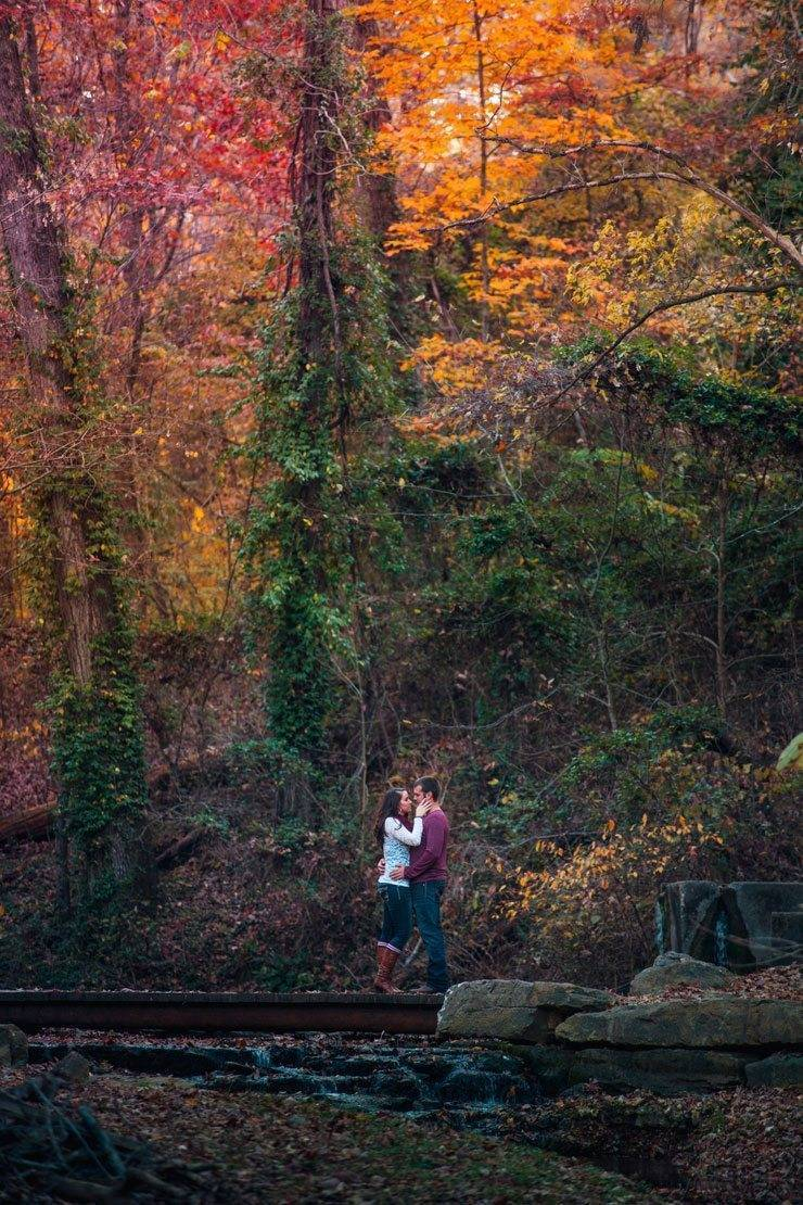 Autumnal Engagement Shoots