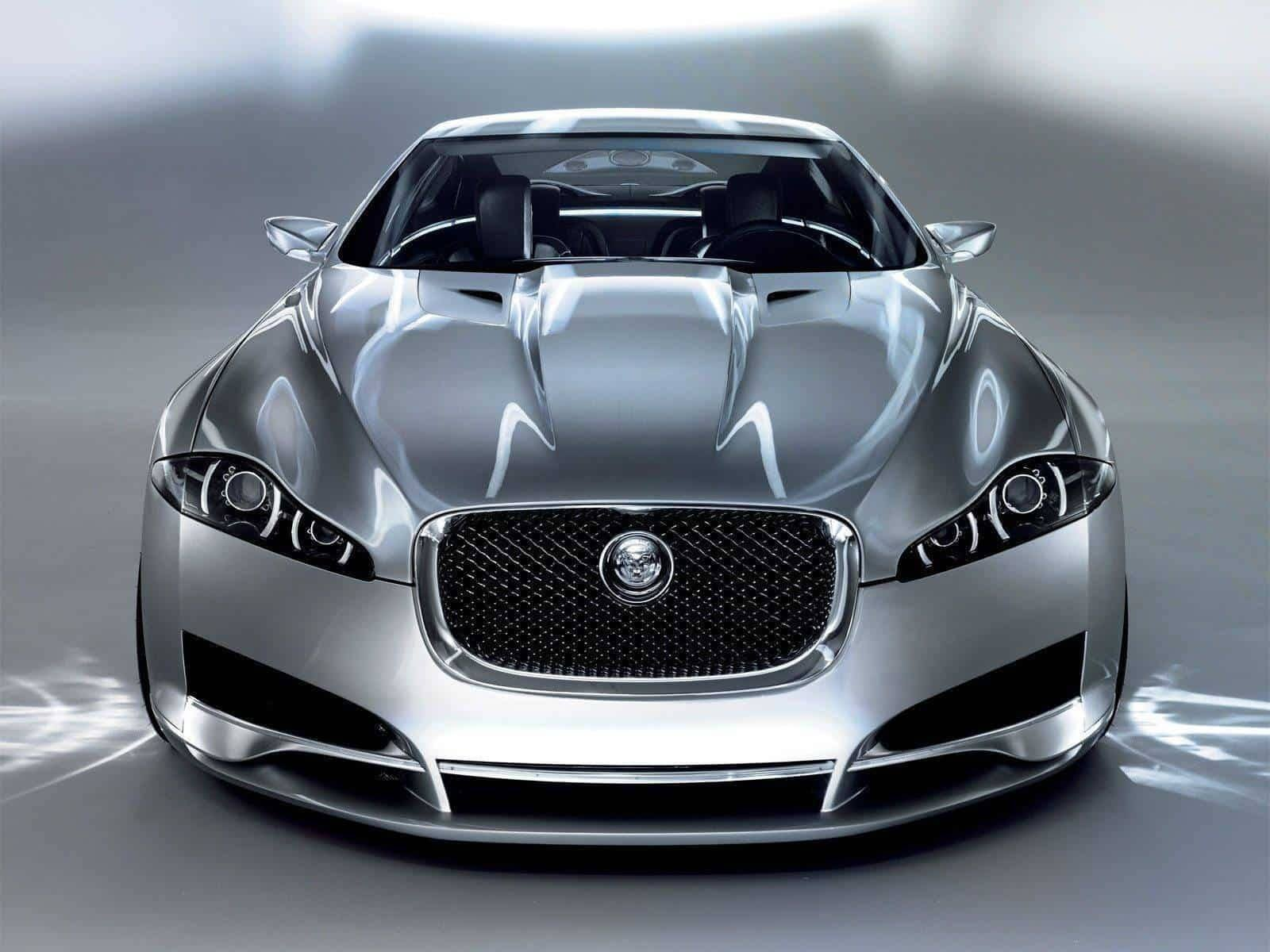 Jaguar – set your pulse racing