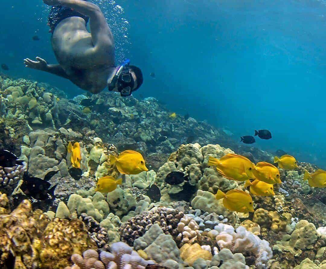 Hawaii - a dreamer's paradise
