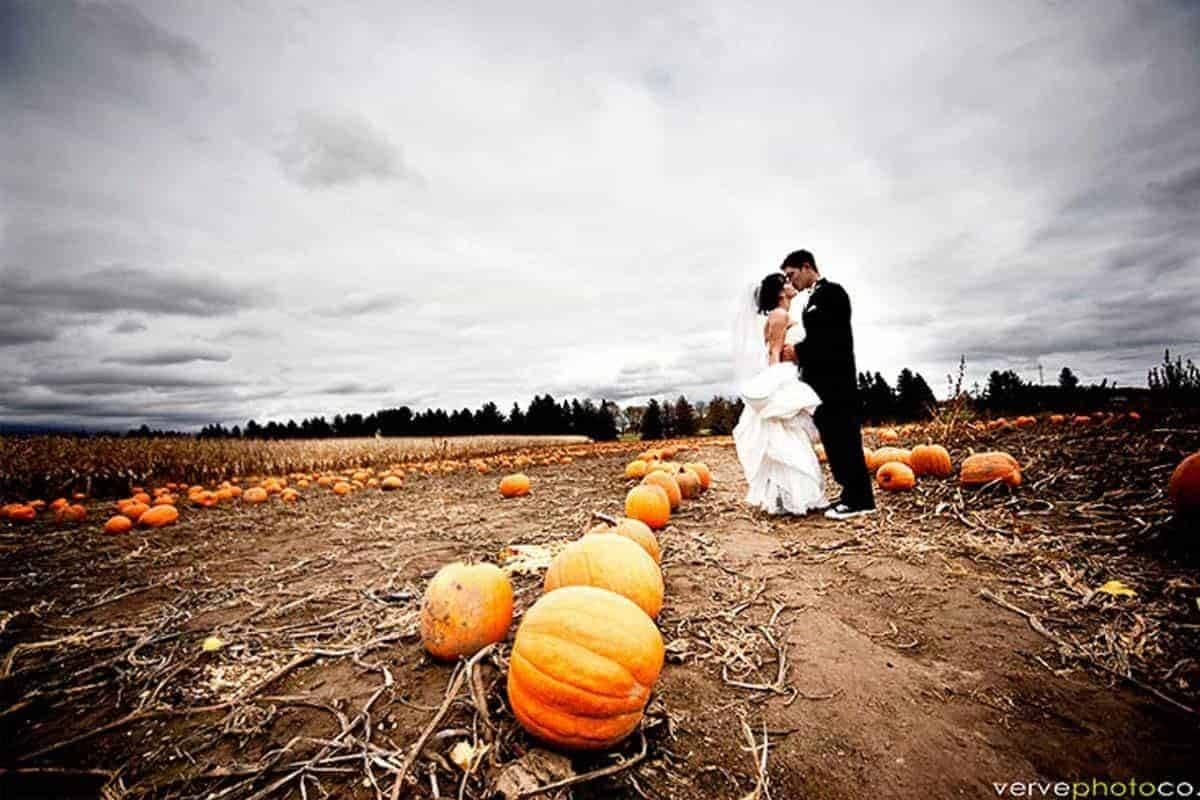 Wedding-Slideshow6